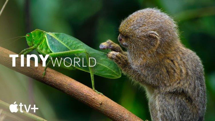 """Phim tài liệu """"Tini World"""" chính thức ra mắt trên Apple TV+"""